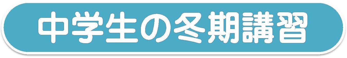 中学生の冬期講習/浦和の学習塾,個別対応Be‐1,びーわん